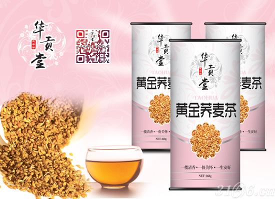 黄金荞麦茶