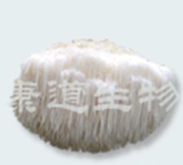 康道生物供猴头菇菌丝粉