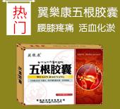河南省国药医药集团有限公司翼樂康品牌营销中心